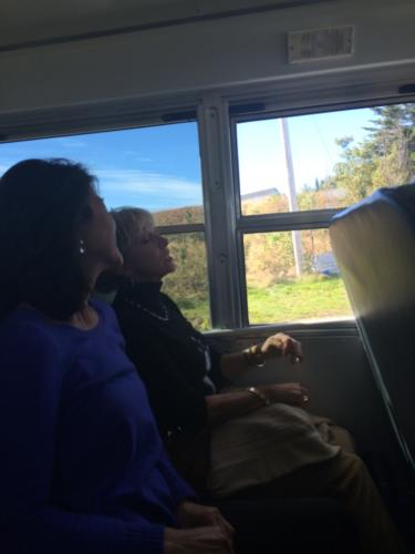 bus-to-bonavista